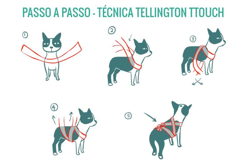 tecnica tellington touch